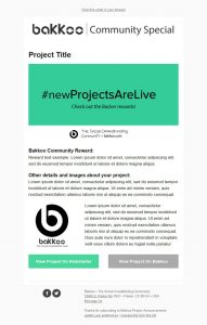 Bakkoo Dedicated Projects Example Template Blank